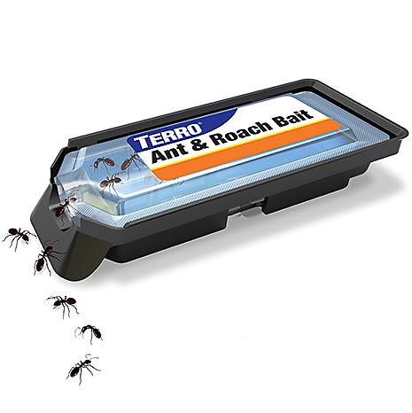 Eliminate Ants