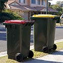 Outdoor trash bins