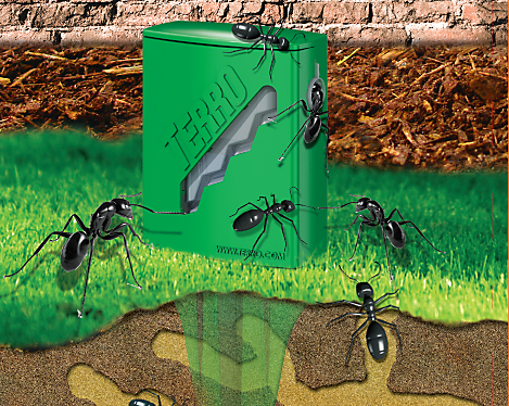 Outdoor Ant Bait Liquid